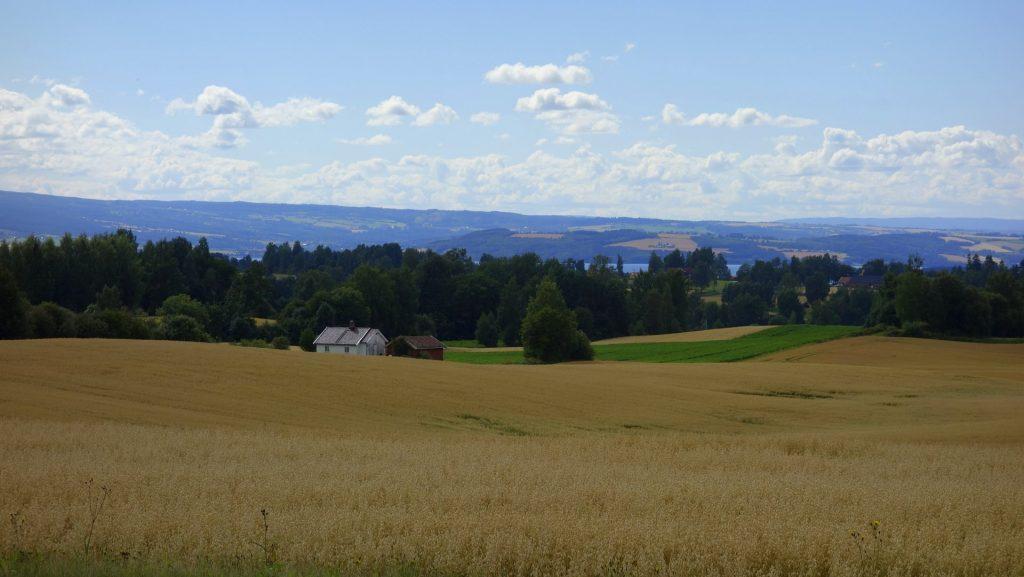 cicloturismo-campos-cultivo